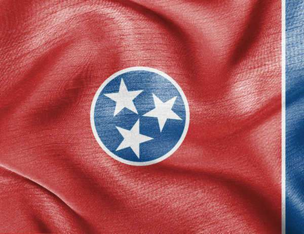 The State Laws of Tennessee
