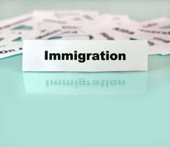 Important Topics in Immigration