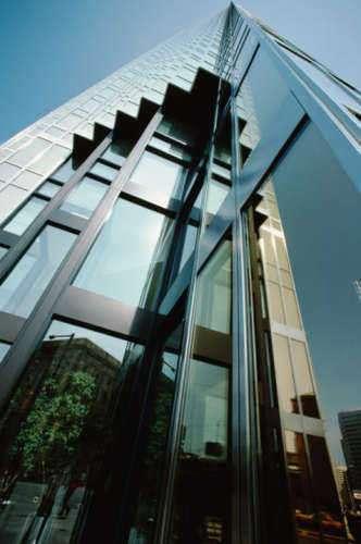 International Finance Corporation Role
