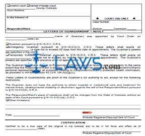 letters of guardianship adult category guardianship